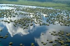 Petrobras ganha prêmio da Firjan por economia de água