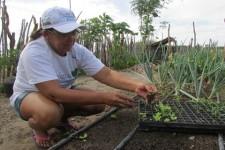 Projeto Bioágua promove o reúso de água no sertão do Rio Grande do Norte